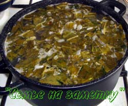 Готовим зеленый суп со щавелем