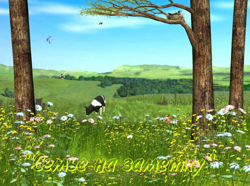 Ожившая фотография с коровой