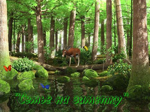 Ожившая фотография Косуля в лесу