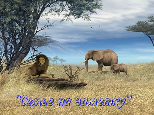 Ожившая фотография со львом