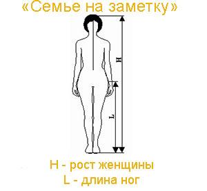 Как вычислить длину ног