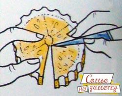 Делаем из лимона украшение бабочку