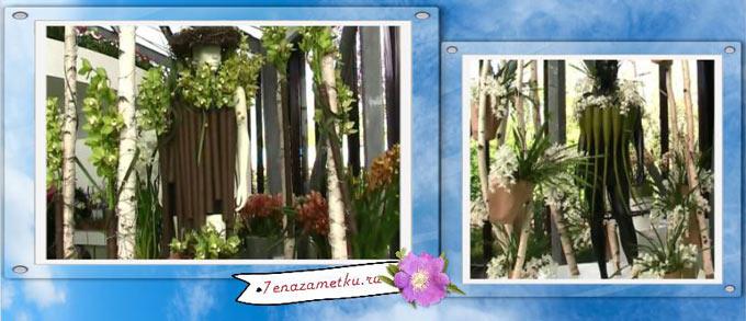 Павильон Беатрикс с орхидеями в Нидерландах