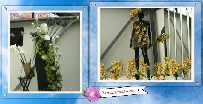 Оформление павильона с орхидеями
