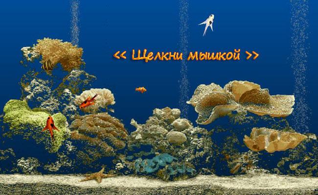 Живой аквариум