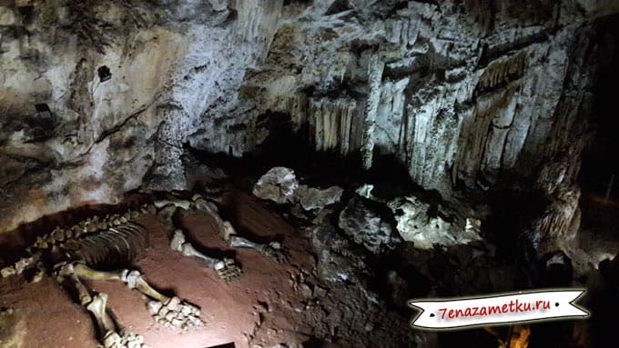Скелет мамонта в пещере Эмине-Баир-Хосар